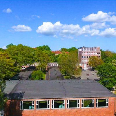 Der FREI DAY an der Max-Planck-Schule
